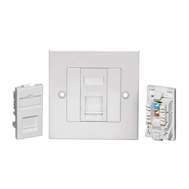 Cat6 UTP RJ45 Modules with Faceplate | Cat6 Modules & Outlets